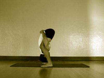 tittibhasana b  mark stephens yoga