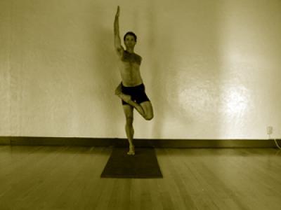 ardha baddha padmottanasana  mark stephens yoga