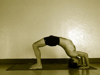 urdhva dhanurasana  mark stephens yoga