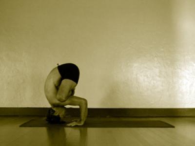 urdhva kukkatasana  mark stephens yoga