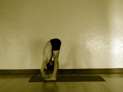 padahastasana  mark stephens yoga