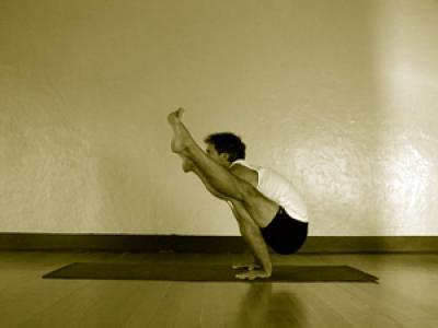 tittibhasana a  mark stephens yoga
