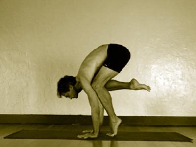 bakasana  mark stephens yoga